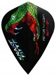 Red Dragon Flight Hardcore Peter Wright - Kite - Black Green